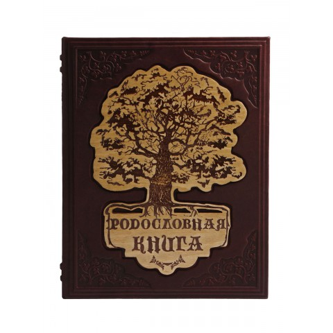 Семейная родовая книга книга Арт Кажан 620-05-08