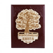 Родословная книга Мое семейное дерево 620-05-30 искуственная кожа