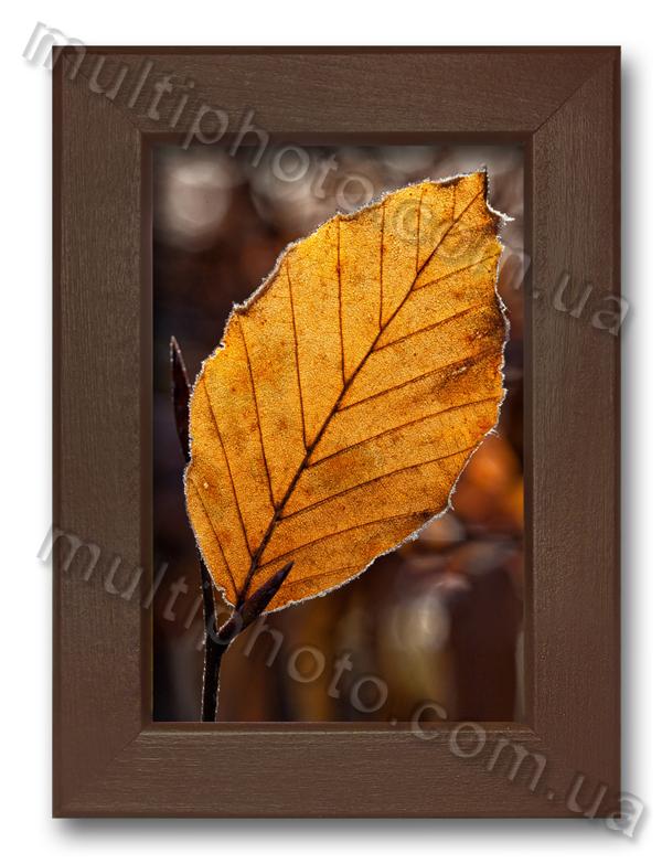 Деревянная фоторамка в коричневом цвете