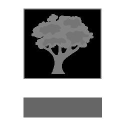 Фоторамка из натурального дерева сосна