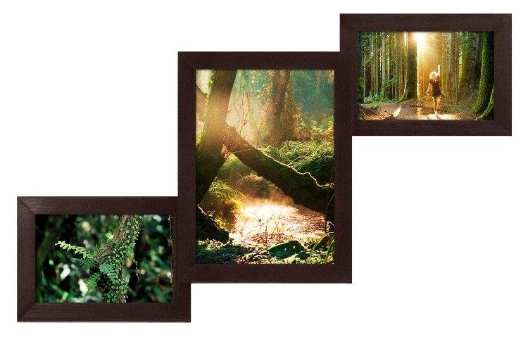 мультирамка Лесенка на 3 фото в оформлении современного интерьера